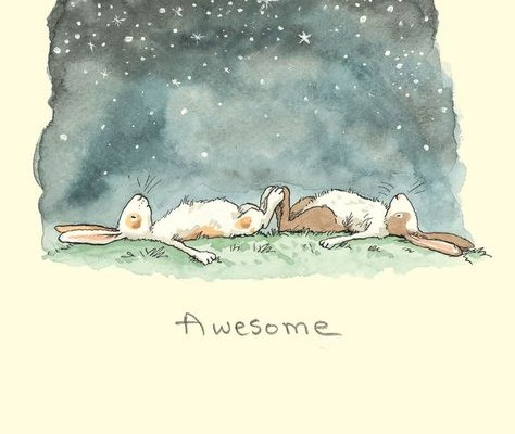 Stargazing Bunnies
